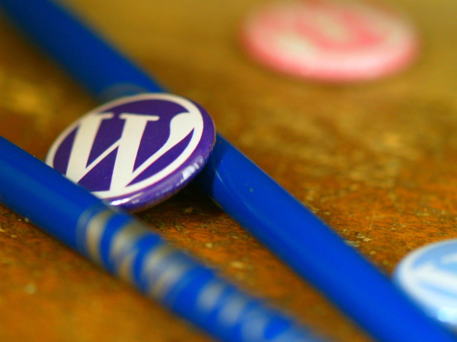 10 Amazing Facts about WordPress